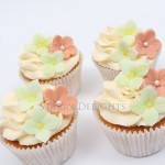 Cupcakes Class Newark, Lincoln, Nottingham